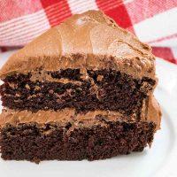 Featured Image Chocolate Mayonnaise Cake