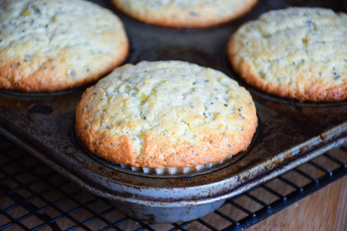 Baked Lemon Poppyseed Muffins in the muffin pan