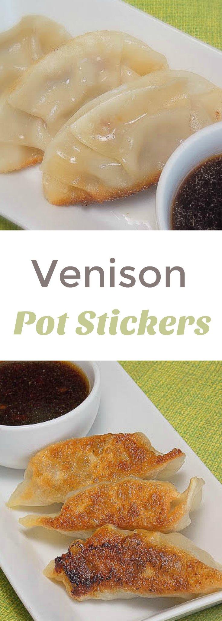 Venison Pot Stickers