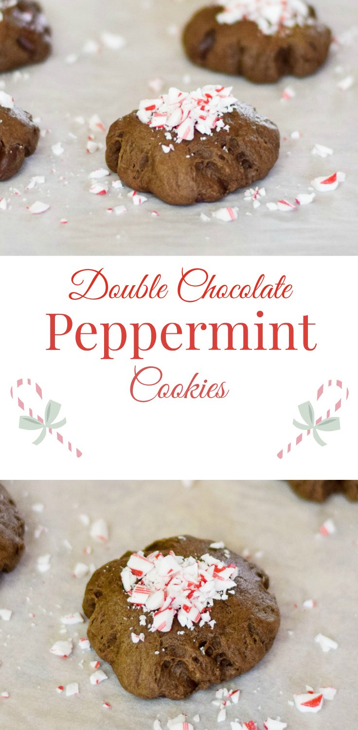 Double Chocolate Peppermint Cookies