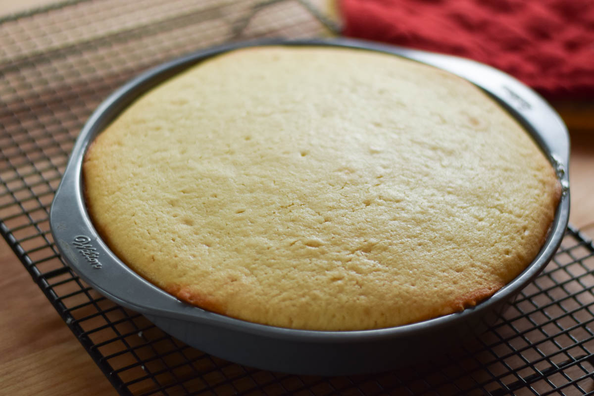 Baked cake in cake pan
