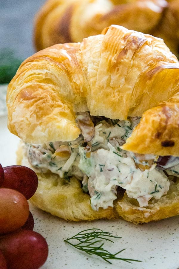 Up close image of a golden croissant roll filled with a chicken salad flecked with red grapes and chopped dill.